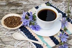 Bevanda dalla cicoria e dalla cicoria di fioritura fotografie stock libere da diritti