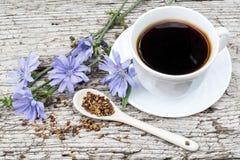 Bevanda dalla cicoria e dalla cicoria di fioritura Fotografia Stock