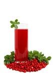 Bevanda dei mirtilli della frutta Fotografia Stock Libera da Diritti