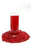 Bevanda dei mirtilli della frutta Immagini Stock
