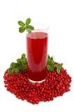 Bevanda dei mirtilli della frutta Fotografie Stock Libere da Diritti