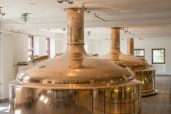 Bevanda della birra di Carlsberg Immagini Stock Libere da Diritti