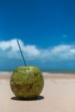 Bevanda della noce di cocco sulla spiaggia tropicale Fotografia Stock Libera da Diritti