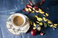 Bevanda di autunno con il libro di frutti e l'umore calmo immagini stock libere da diritti