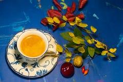 Bevanda di autunno con il libro di frutti e l'umore calmo immagine stock libera da diritti