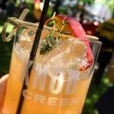 Bevanda di estate dell'insenatura della manopola immagine stock