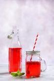 Bevanda di frutta del lampone Immagini Stock Libere da Diritti