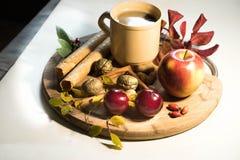 Bevanda di inverno con il libro di frutti e l'umore calmo Immagine Stock Libera da Diritti