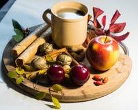 Bevanda di inverno con il libro di frutti e l'umore calmo Fotografia Stock