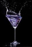 Bevanda di Martini Fotografie Stock