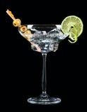 Bevanda di Martini Fotografia Stock