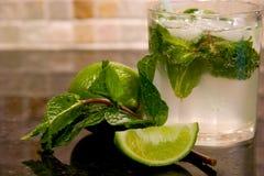 Bevanda di Mojito sul controsoffitto Fotografie Stock Libere da Diritti