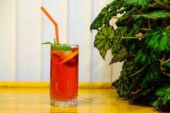 Bevanda fredda della bacca di estate con la menta sulla cima Fotografia Stock