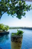 Bevanda fresca dallo stagno, umore del cocktail di festa fotografie stock