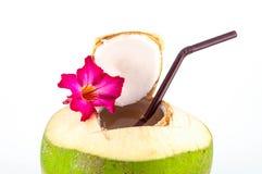 Bevanda fresca della noce di cocco. Fotografia Stock