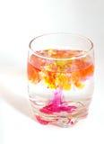 Bevanda mortale Fotografia Stock