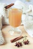 Bevanda piccante della mela Immagine Stock