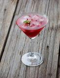 Bevanda rossa di martini di estate con la menta su di legno Fotografie Stock Libere da Diritti