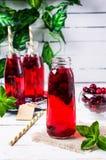 Bevanda rossa trasparente delle bacche Fotografia Stock