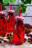 Bevanda rossa trasparente delle bacche Immagini Stock