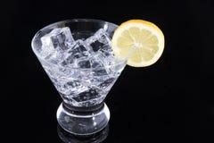 Bevanda scintillante in un vetro di martini con una fetta del limone Fotografie Stock