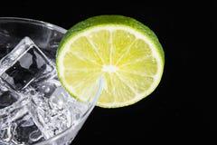 Bevanda scintillante in un vetro di martini con una fetta della calce Fotografie Stock Libere da Diritti