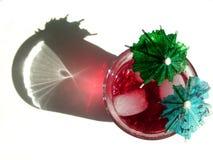 Bevanda tropicale Fotografie Stock Libere da Diritti
