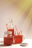 Bevande del lampone Immagini Stock Libere da Diritti