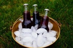 Bevande di picnic in un secchiello del ghiaccio Immagine Stock