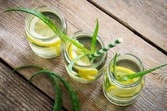 Bevande di vera dell'aloe con le fette del limone Vista superiore Fotografie Stock Libere da Diritti