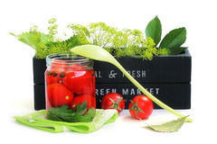 Bevara tomater royaltyfria bilder