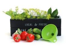 Bevara tomater royaltyfria foton