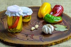 Bevarat vegetariskt matbegrepp Rött på burk, gör grön gula peppar i en krus på träbakgrund fotografering för bildbyråer