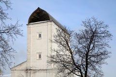 Bevattna öppningen står hög i Kolomenskoe Royaltyfri Foto