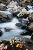 Bevattna att flöda över stenblock i duvaliten vik i de rökiga bergen royaltyfri foto