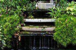 Bevattna att flöda av av en konstgjord vattenfallkant med grönt nat Arkivfoton