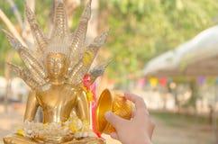 Bevattna att hälla till Buddhastatyn i Songkran festivaltradition av Thailand Royaltyfria Foton
