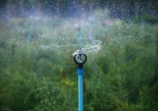 Bevattna att plaska från den utomhus- kultiverade åkerbruka lantgårdspridaren Royaltyfri Foto