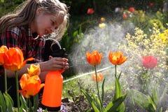 Bevattna blommaträdgård - härlig flicka som bevattnar tulpan Arkivbild
