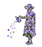 Bevattna blommor Fotografering för Bildbyråer