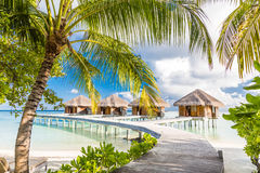 Bevattna bungalower med härlig blå himmel och havet i Maldiverna arkivbilder