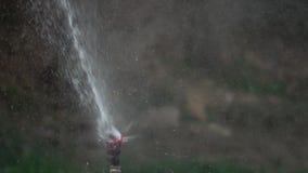 Bevattna det gröna gräset Kolsyrat vatten som besprutar ut ur spridaren på den gröna gräsmattan Arbeta i trädgården för sommar Ul arkivfilmer