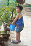 bevattna för pojkeväxt royaltyfria bilder