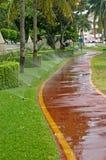 bevattna för sprinkler Arkivfoton