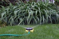 bevattna för sprinkler Arkivbilder