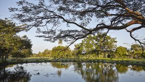 Bevattna faran i golfbanan för Gec Lombok, Indonesien royaltyfri foto