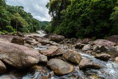 Bevattna flöden Royaltyfri Fotografi