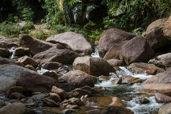 Bevattna flöden Fotografering för Bildbyråer