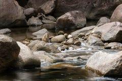 Bevattna flöden Royaltyfria Foton