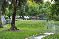 Bevattna gräsmattor fotografering för bildbyråer